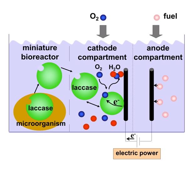 a.6 regenerative fuel cell